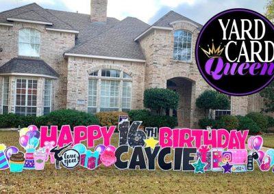 Fun Birthday Lawn Sign in Allen