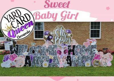 Its A Girl Birth Announcement Yard Sign Rental Chesapeake, VA